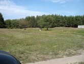 панорама земельного участка