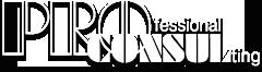Логотип ProConsul